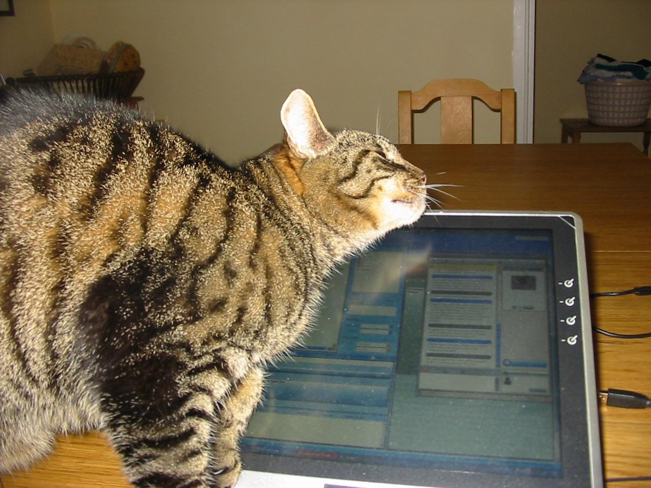 Ben on computer 2