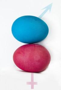 69-eggs